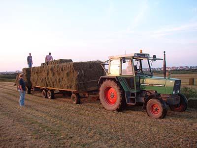 De Boerderij 2e fotoblok03