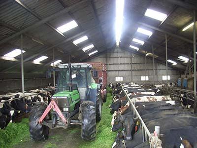 De boerderij 1e fotoblok01